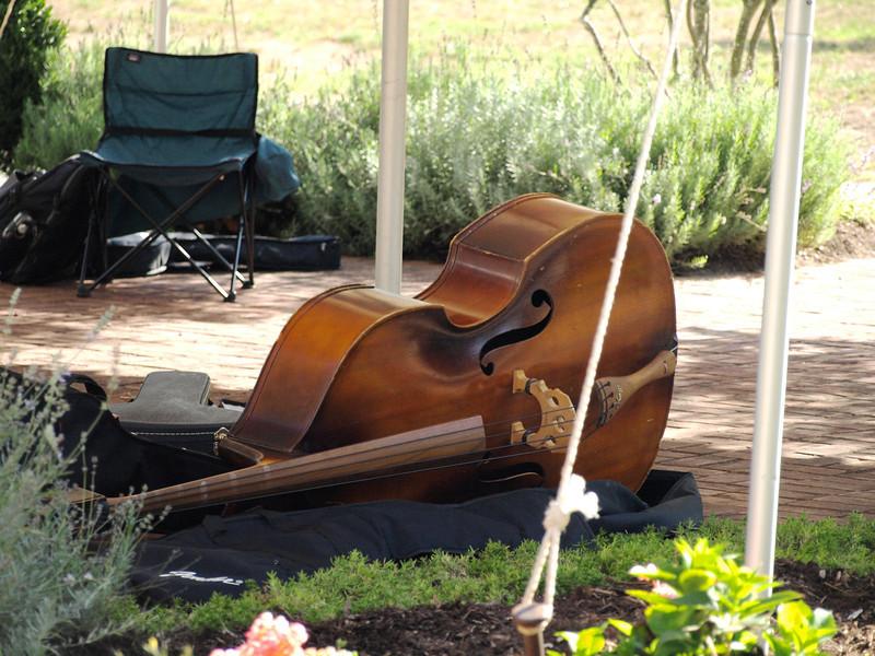 009 Resting Bass