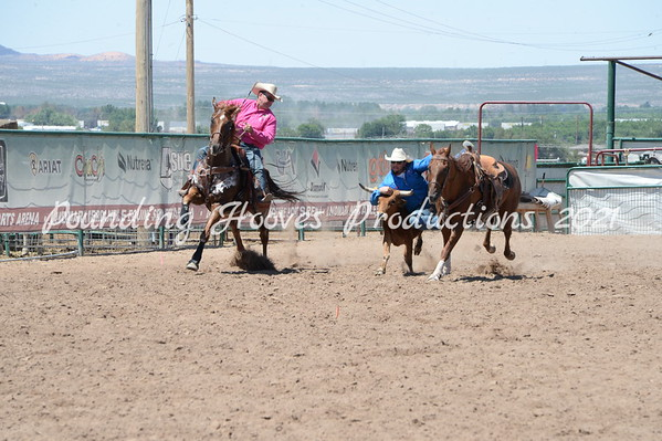 Sr Steer Wrestling