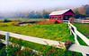 Vermont Pasture