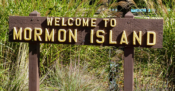 Morman Island NE