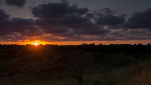 Mid-summer sunset. Waterleidingduinen, The Netherlands.
