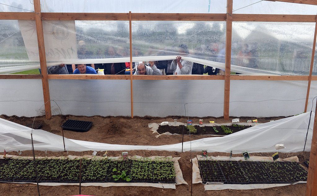 . Curious attendees peek into the new and very large greenhouse at Rolling Hills Prep School, which will enhance the school\'s horticulture program. Photo by Brad Graverson/The Daily Breeze 11/21/13