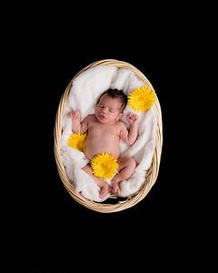 Hunt Family Newborn