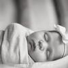 {Newborn} Finlee (3 of 41)