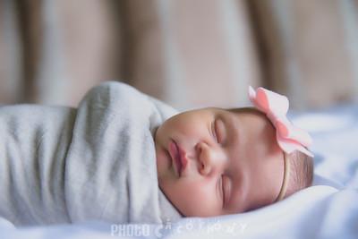 {Newborn} Finlee (102 of 41)