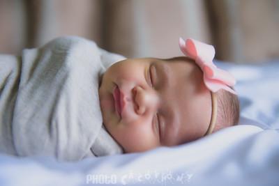 {Newborn} Finlee (104 of 41)