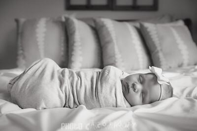 {Newborn} Finlee (2 of 41)