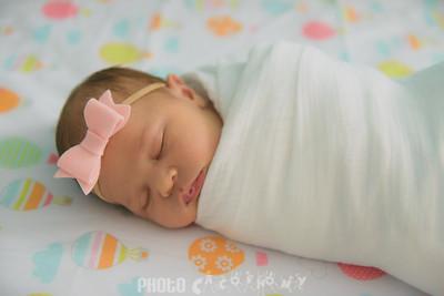{Newborn} Finlee (127 of 41)