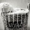 {Newborn}  Noah (10 of 21)