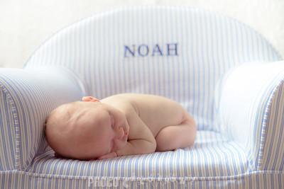 {Newborn}  Noah (72 of 78)