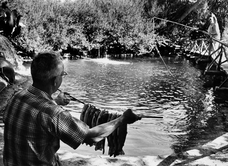 . Man displays catch of fish caught at the Sportsmen\'s Lodge, Studio City in 1960.   (Los Angeles Public Library)