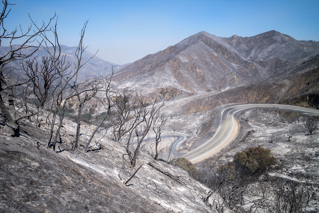 . A desolate Angeles forest in a few from Little Tujunga Sunday morning.  More than 15 structures have been destroyed in the fire which has consumed more than 22,000 acres so far with 10% containment.  (Photo by David Crane Southern California News Group)