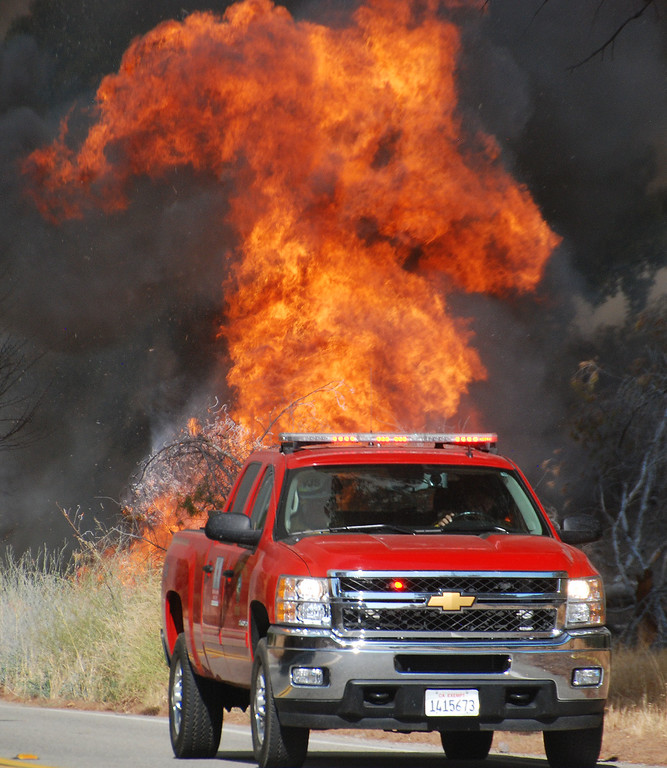 . Santa Clarita, Ca  A truck with fire personnel just makes it past flames as they move down Placerita Canyon Road. (Photo by Mike Meadows)