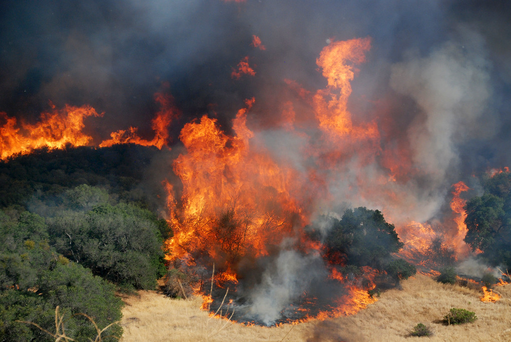 . Santa Clarita, Ca   Flames chew up thousands of acres in Placerita Canyon, The fire is expected to burn out the famed canyon. (Photo by Mike Meadows)