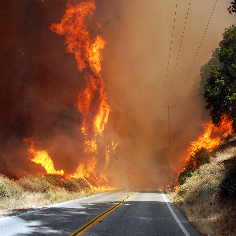 . Santa Clarita, Ca  Trees along Placerita canyon torch as flames from the sand Fire burn on both sides of the dfamed canyon...The fire caused the shutdown of highway 14 as the fire approached Golden Valley Road. (Photo by Mike Meadows)