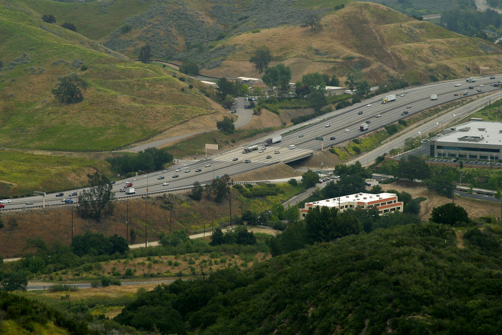 . Freeway going through Liberty Canyon.   Mountain lions living in the Santa Monica Mountains face the possibility of extinction. Currently the population is vigorous, with stable population growth and healthy rates of survival and reproduction. The mountain lions are isolated from natural areas by freeways and development which could ultimately result in the population going extinct.  (Photo courtesy National Park Service)
