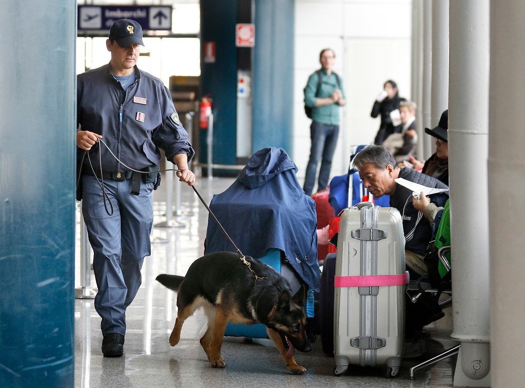 . A Italian police dog sniffs passengers\' luggage at Leonardo Da Vinci airport in Fiumicino, near Rome, Tuesday, March 22, 2016. Authorities in Europe and beyond have tightened security at airports, on subways, at the borders and on city streets after deadly attacks Tuesday on the Brussels airport and its subway system. (AP Photo/Alessandra Tarantino)