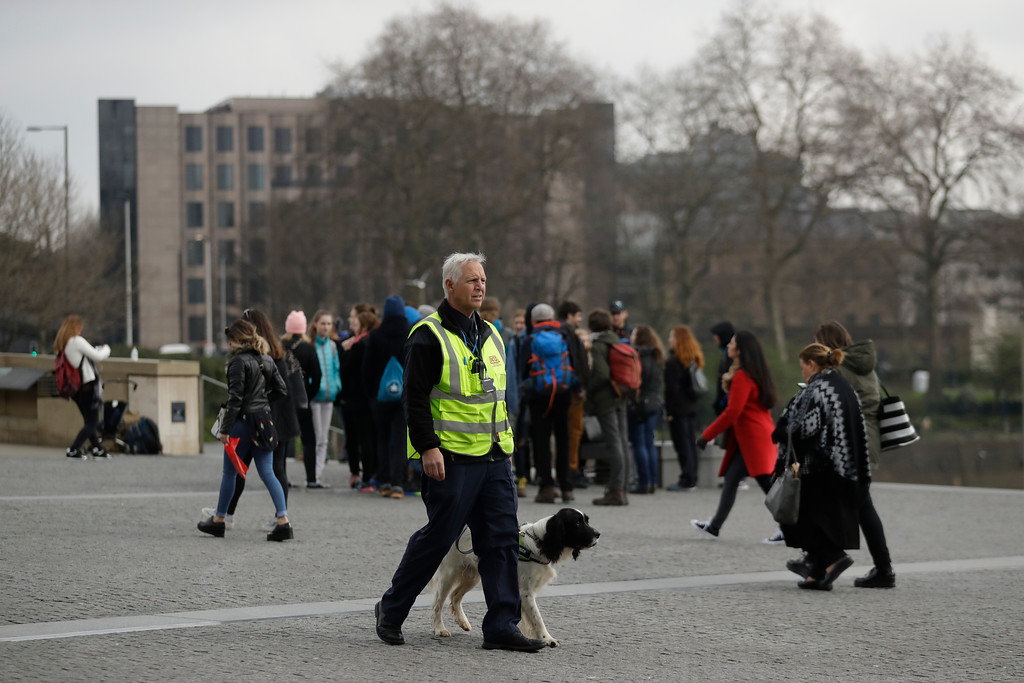 . A security officer and his sniffer dog patrol next to the Tower of London, a popular tourist attraction in London, Thursday, March 23, 2017. On Wednesday a man went on a deadly rampage, first driving a car into pedestrians then stabbing a police officer to death before being fatally shot by police within Parliament\'s grounds in London. (AP Photo/Matt Dunham)
