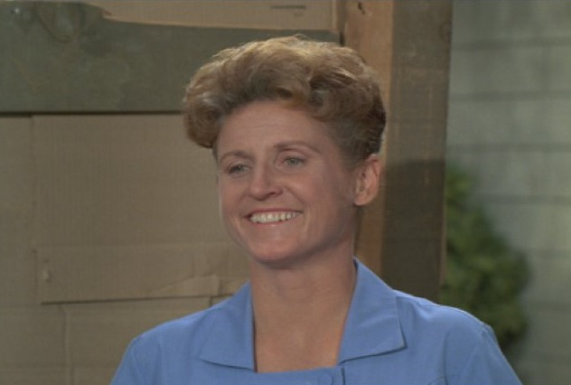 Description of . Ann B. Davis, the Emmy-winning actress who played the housekeeper on