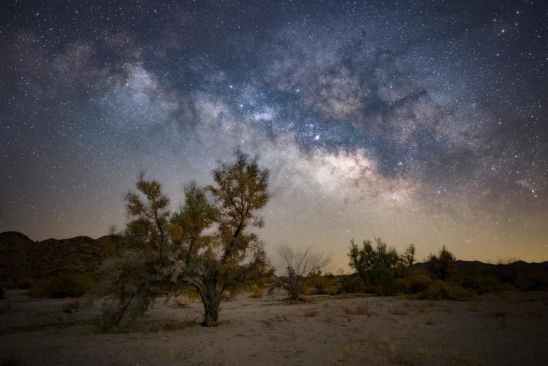 Milky Way over Joshua Tree