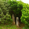 Hidden graves, Norfolk Island