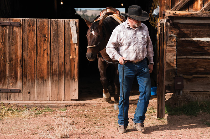 Matthew Gaston | The Sheridan Press<br>The OW Ranch's most experienced cowboy, Ray Stoltz, leads his horse out of the barn Thursday, Oct. 25, 2018.