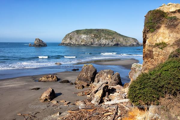 Harris Beach Cliff
