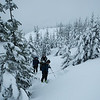 Examining a snow pit