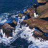 Yaquina Head Lighthouse from the air