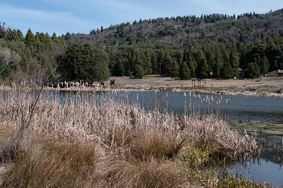 Palomar_Mountain_2012-6350