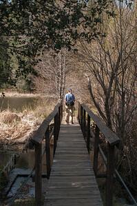 Palomar_Mountain_2012-6344