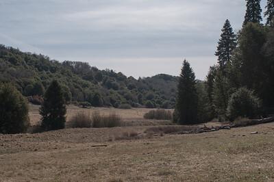 Palomar_Mountain_2012-6369