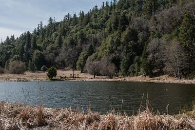 Palomar_Mountain_2012-6345