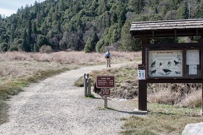 Palomar_Mountain_2012-6342
