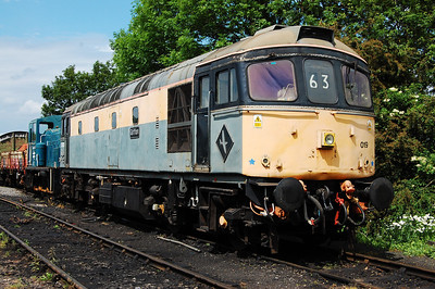 33019 is pictured in the yard at Shackerstone on the Battlefield Line (13/06/2010)