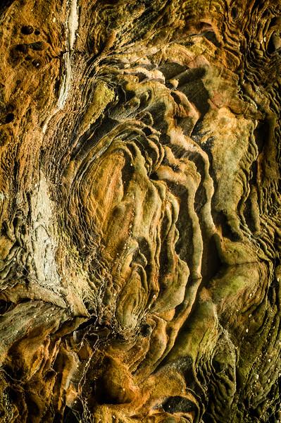 Weathered Rock Patterns, Natural Bridge State Park, Kentucky, USA