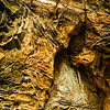 Weathered Rock Patterns, Natural Bridge State Park, Kentucky, USA