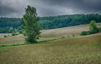_DSF1710_HDR