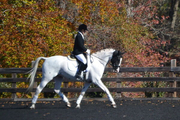 Poplar Springs 11-2012 155