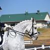 Poplar Springs 11-2012 061