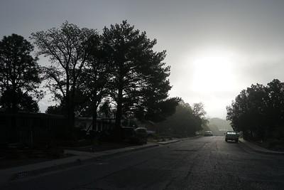 Fog abq 02020