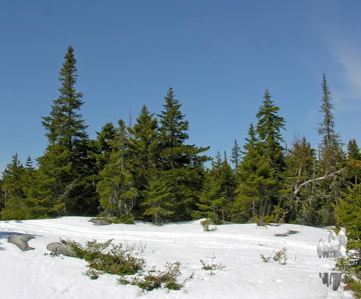 On the summit of Bald Mountain.