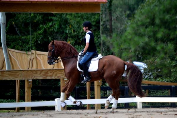 Rebecca and Instruido - 9-1-2012 045