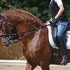 Rebecca and Instruido - 9-1-2012 008