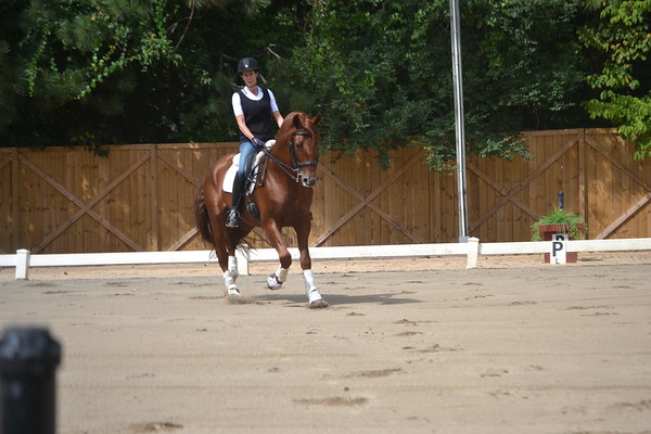 Rebecca and Instruido - 9-1-2012 013
