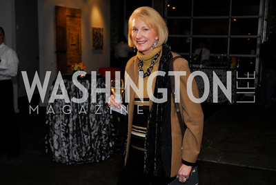Lola Reinsch,November 17,2011,Reception for Lift DC,Kyle Samperton
