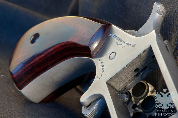 Revolvers in Natural Light (3)