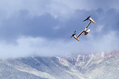 Osprey turning