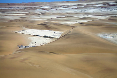 Transitory Barchan Dunes