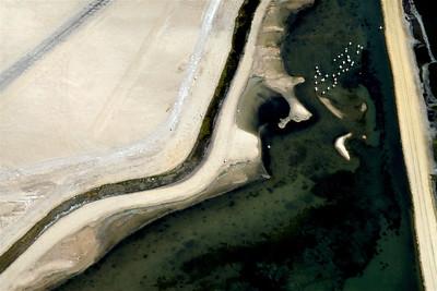 Saltpan Shallows & Flamingos